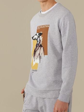 Regular-fit sweatshirt in cotton jersey