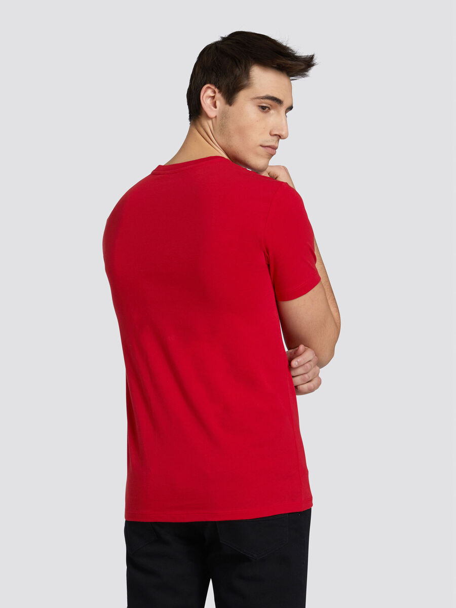 Regular fit cotton jersey T shirt with lettering
