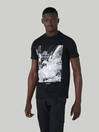 Regular-fit pure cotton T-shirt