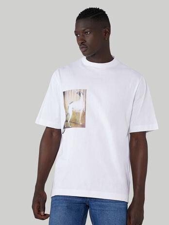 T-Shirt im Over-Fit aus reiner Baumwolle mit Print