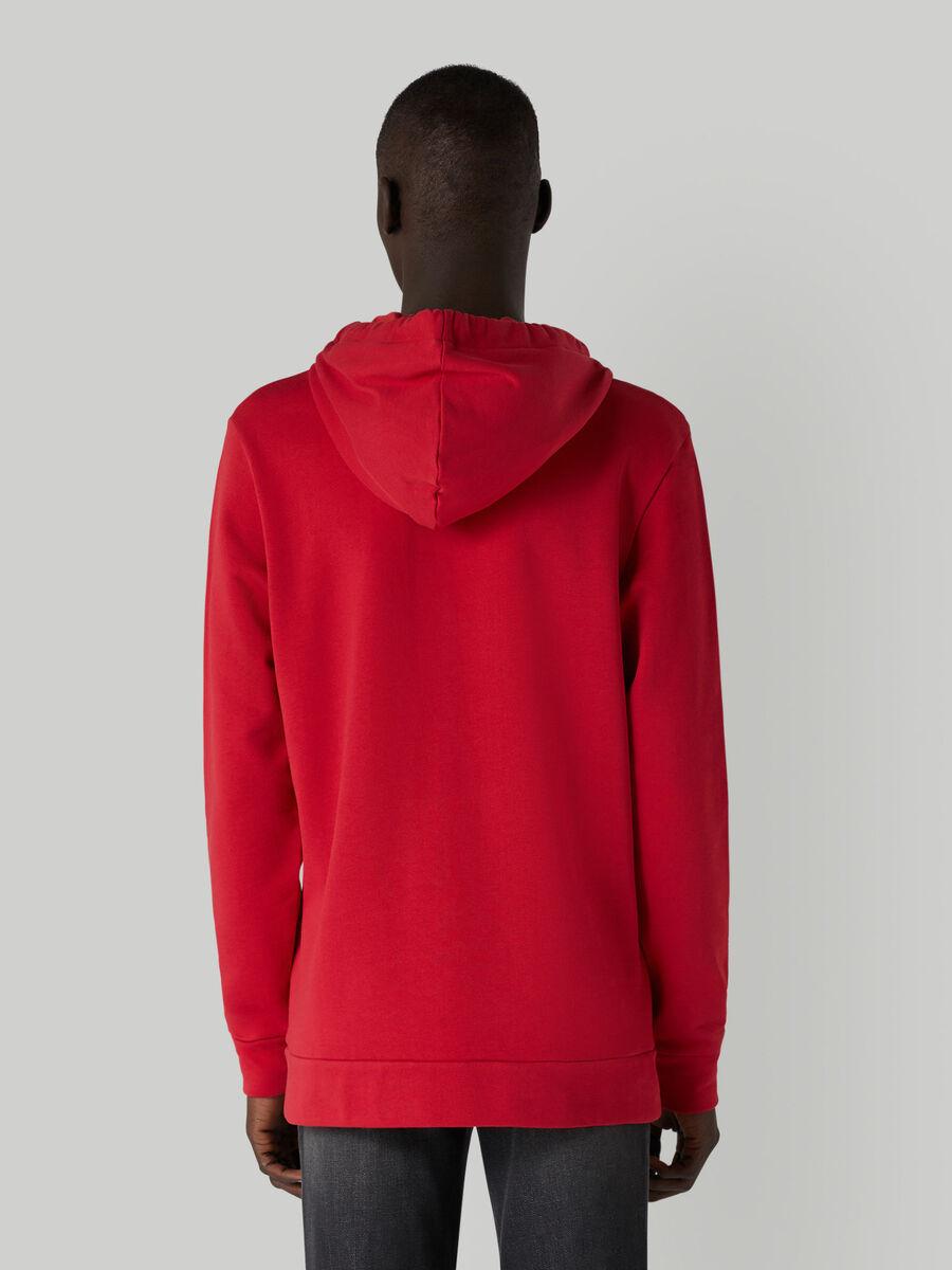 Regular-fit cotton hoody