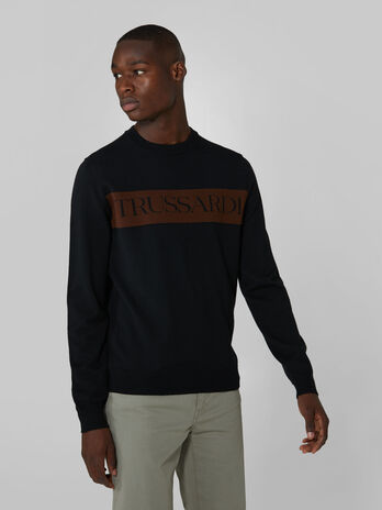 Regular fit crew neck wool pullover with intarsia