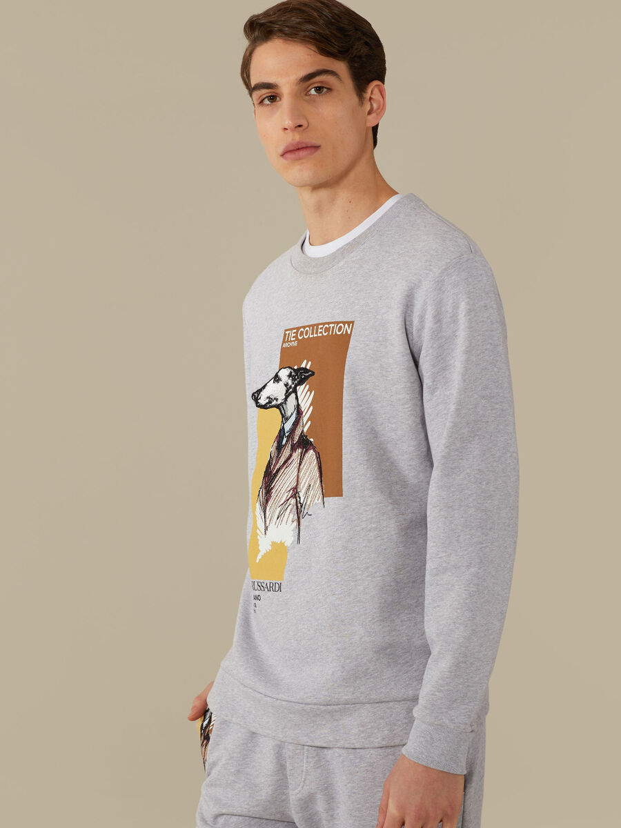Regular-fit sweatshirt in cotton jersey