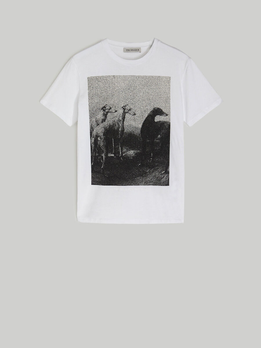 Cotton T-shirt with photo print