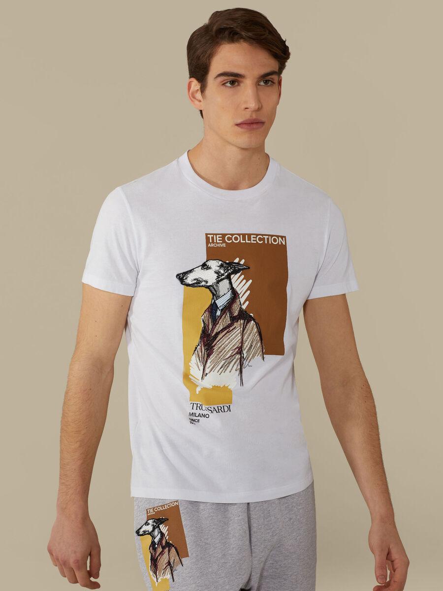 Regular-fit T-shirt in cotton jersey