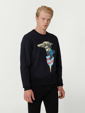 Regular fit sweatshirt with levriero print