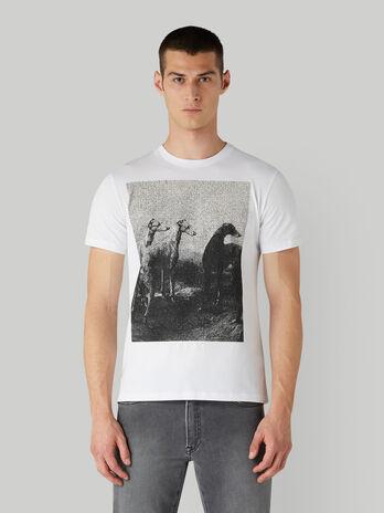 T-Shirt aus Baumwolle mit Foto-Print